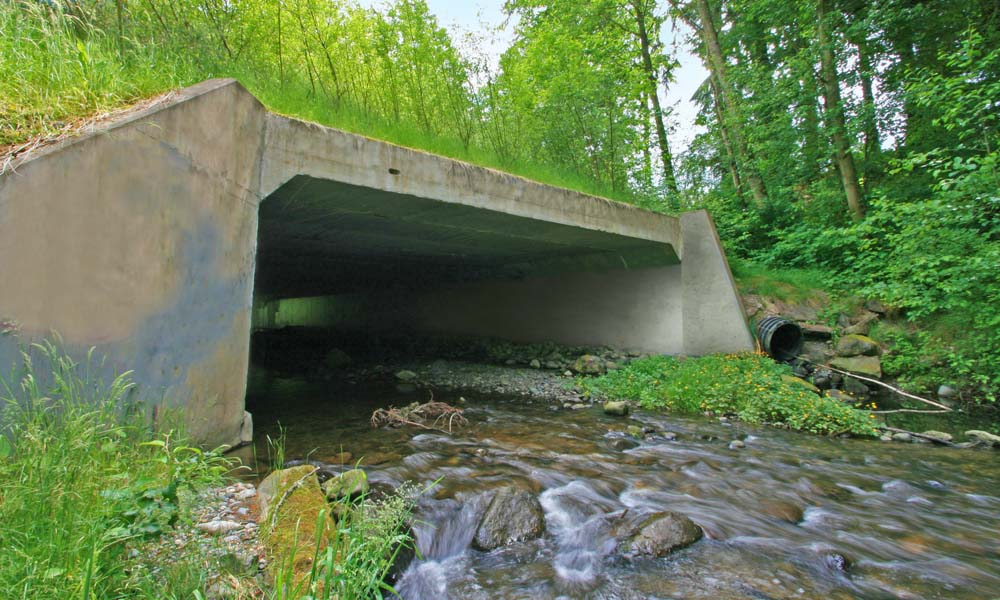 LEACH CREEK CULVERT REPLACEMENT , University Place, Washington  Owner/Client : City of University Place  Services : Civil and Structural Engineering, Environmental Permitting