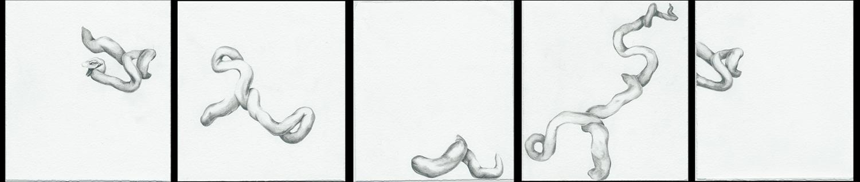Laocoon Drawing Series_1.jpg