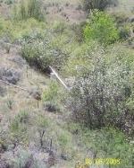 Illegal Diversion at Spirit Ridge2.jpg