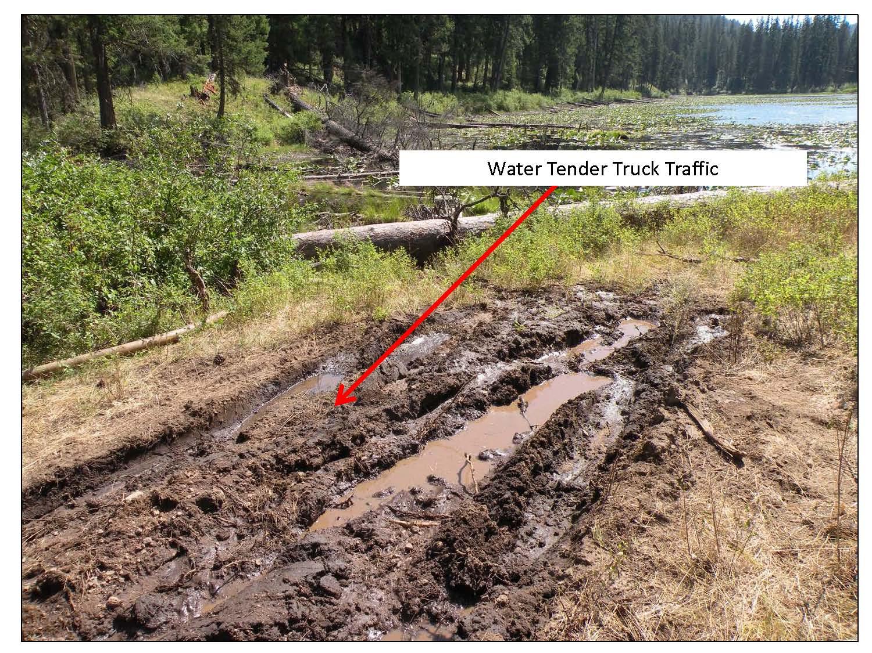 Drafting from Gold Lake Wetland_pics2_Page_2.jpg