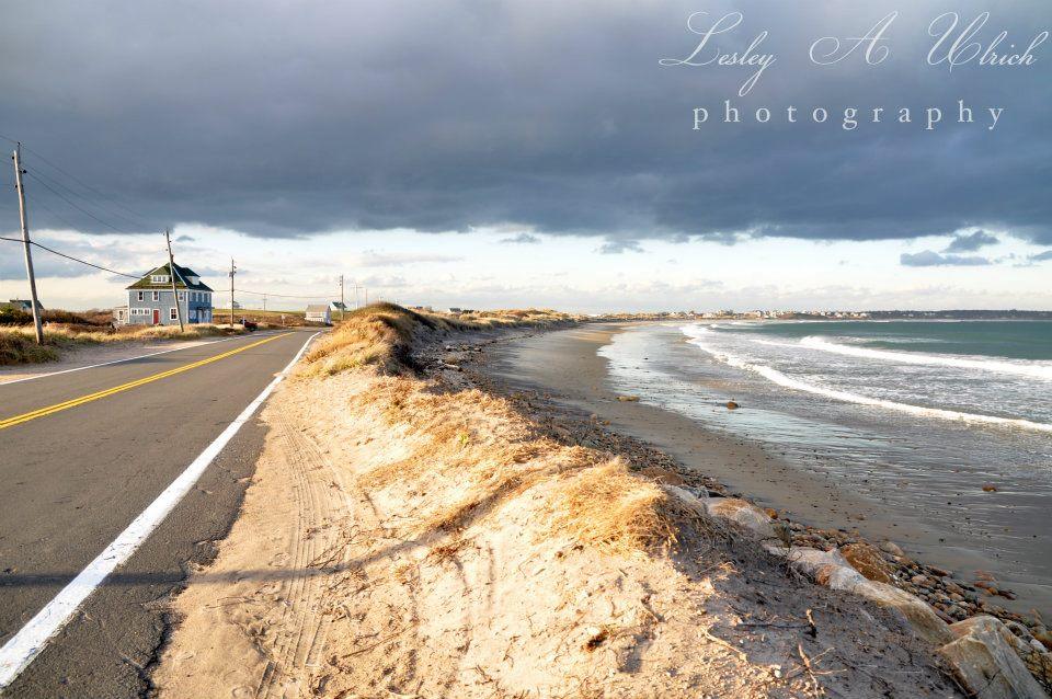 Corn Neck Rd. & Solviken Beach Dunes / Photo by Lesley A. Ulrich