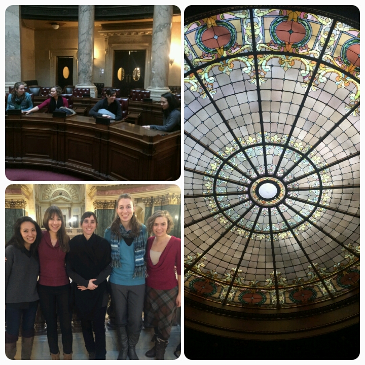 2016 tour of the Wisconsin State Capitol included sitting in on legislative session about gun laws.