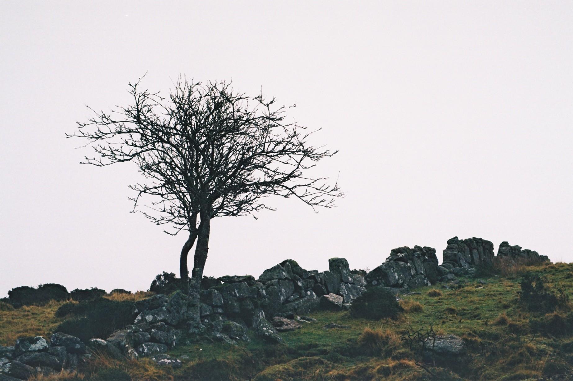 A late December Wander on Dartmoor, Devon