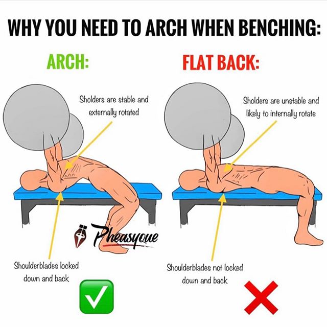 "⭕️WHY YOU NEED TO ARCH WHEN BENCHING⭕️⁣ YES, you NEED to arch! It's not just for powerlifters or big dudes, it's for the safety of your shoulders and your longevity. ⁣⁣⠀ Maybe you're against this statement, maybe not.But chances are you're mistaking the ""right way"" to arch, w/ the ""wrong one"". ⁣ thanks to @pheasyque for this! ⁣ ⁣⁣⠀ Implementing an Upper Back Arch (Thoracic Extension) when bench pressing ensures 3 very important things, as you can see from the drawings: ⁣ ⁣⁣⠀ 1) 𝐒𝐀𝐅𝐄𝐓𝐘: By locking your shoulderblades back together & holding them there for the whole movement, you're preventing yourself from getting injured in the shoulders/tendons areas because the arch allows the shoulders not to internally rotate during the execution of the movement. ⁣ ⁣⁣⠀ 2) 𝐒𝐓𝐀𝐁𝐈𝐋𝐈𝐓𝐘:  Arching your upper back creates a strong ""base"" or muscle shelf where you can rest on, pushing your muscles against the pad. Glutes stay GLUED to the bench, and so do your feet. ⁣ ⁣⁣⠀ 3) 𝐒𝐓𝐑𝐄𝐍𝐆𝐓𝐇: this is simply the strongest way to bench press. If you don't get injured you're also more likey to continue to perform the exercise for more time. This means getting stronger and being able to lift more weight too, obviously. By doing it correctly, you're also able to load the exercise very heavy, therefore finally allowing yourself to build a strong and aesthetic chest. ⁣⁣⠀ 🔥🔥🔥TAG everyone who needs to see and understand this! ⁣⠀ #benchpress #bench #upperbodyworkout #upperbody #upperbodyday #chestworkout #chestday #workoutplan #workouttips #barbellworkout #strongwomen #strongwoman #strengthfeed #strengthtraining #liftingweights #liftweights #liftingheavy #exercise #movemore #strongnotskinny #fitover40 #fitnessjourney #fitnessfirst #chesticles #fattofit #weightlosstips #personaltrainer #nutritioncoach"