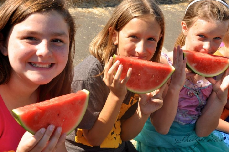 Watermelon-Kids_fitbox_960x960.JPG