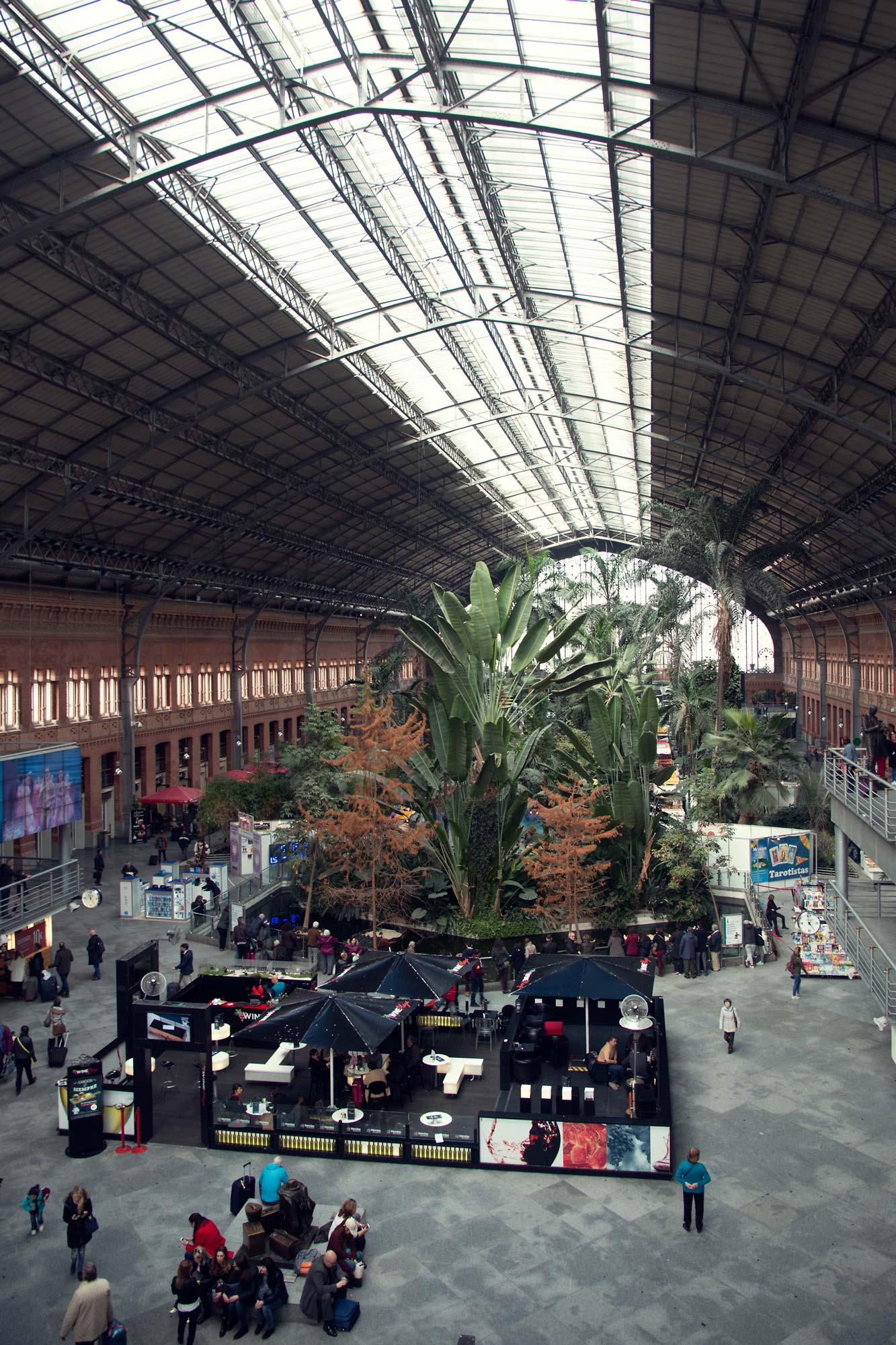 The Tropical Atrium in Madrid's railway station.