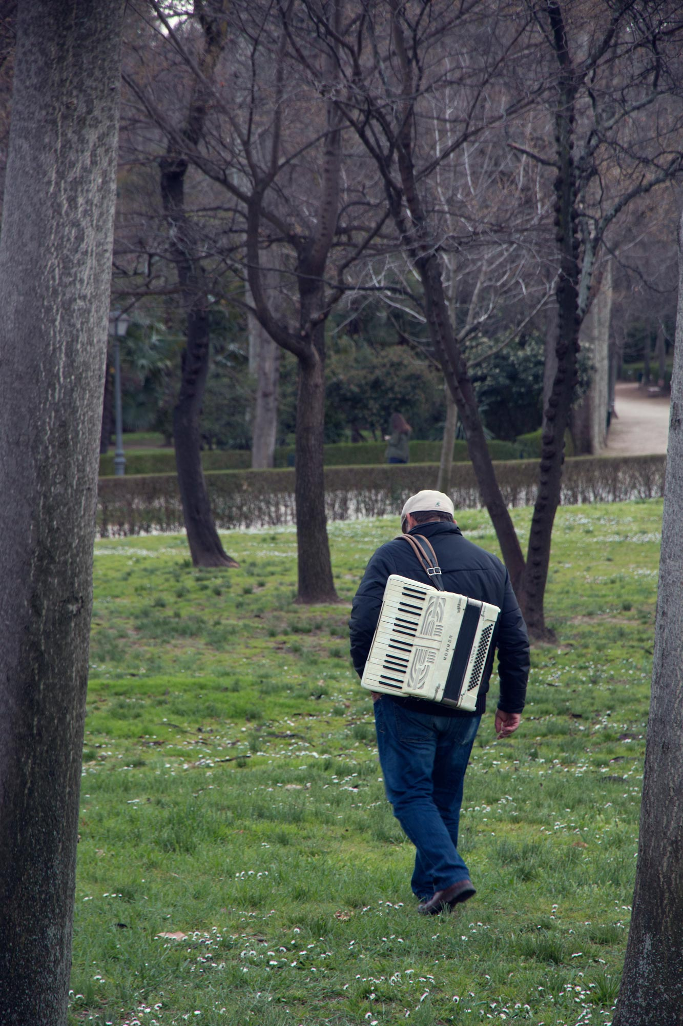 Accordian player in Madrid's Buen Retiro Park