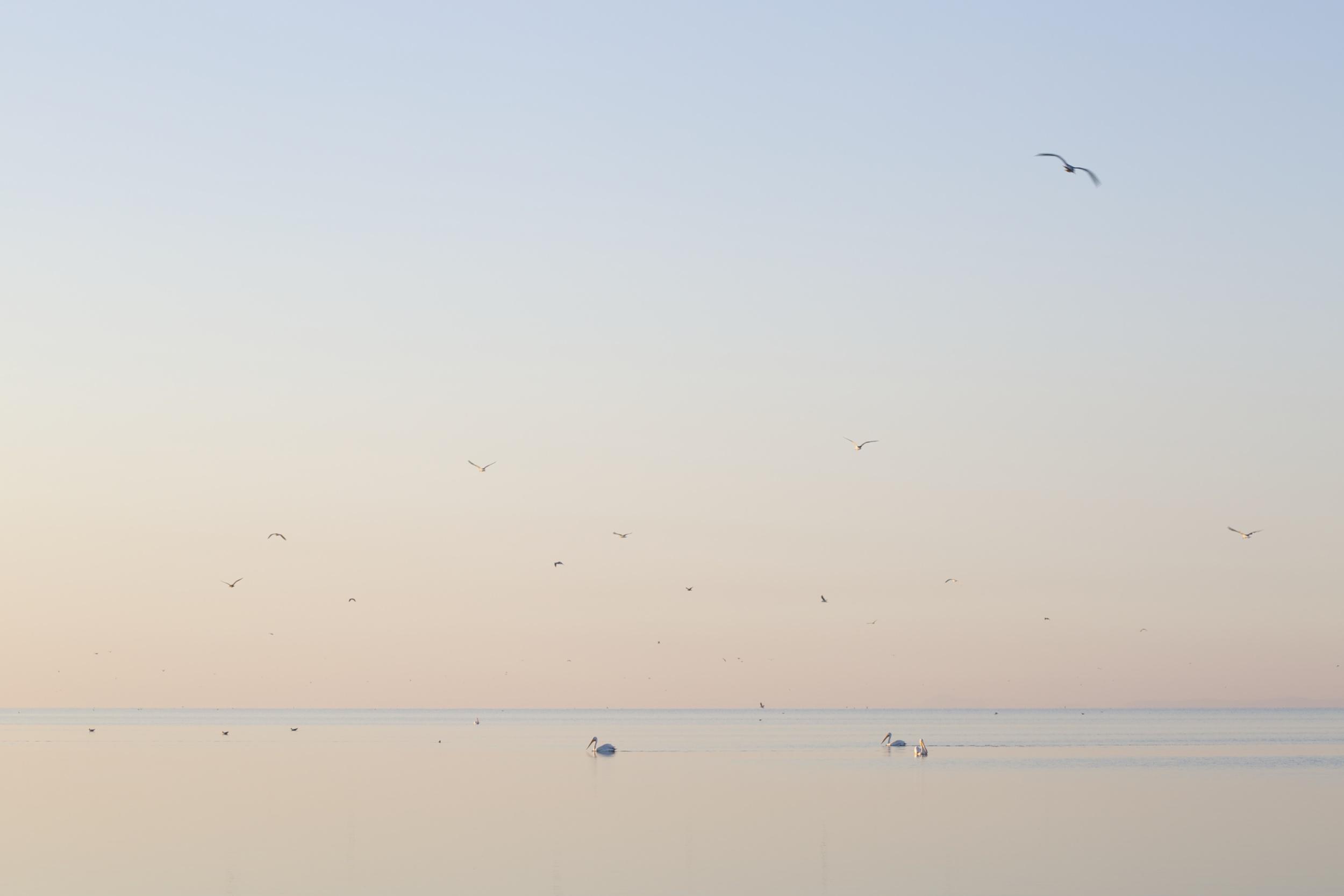 View No. 4, Salton Sea, California,  2015