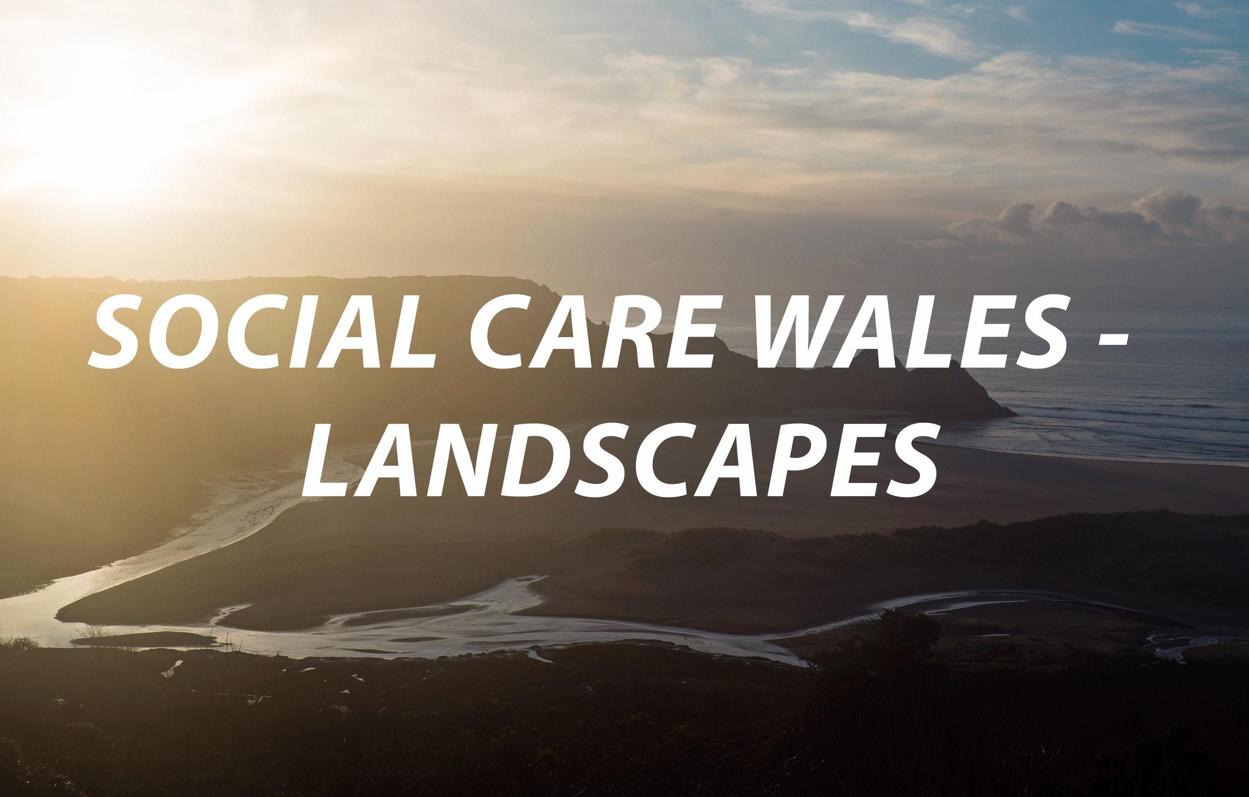Social_Care_landscape.jpg