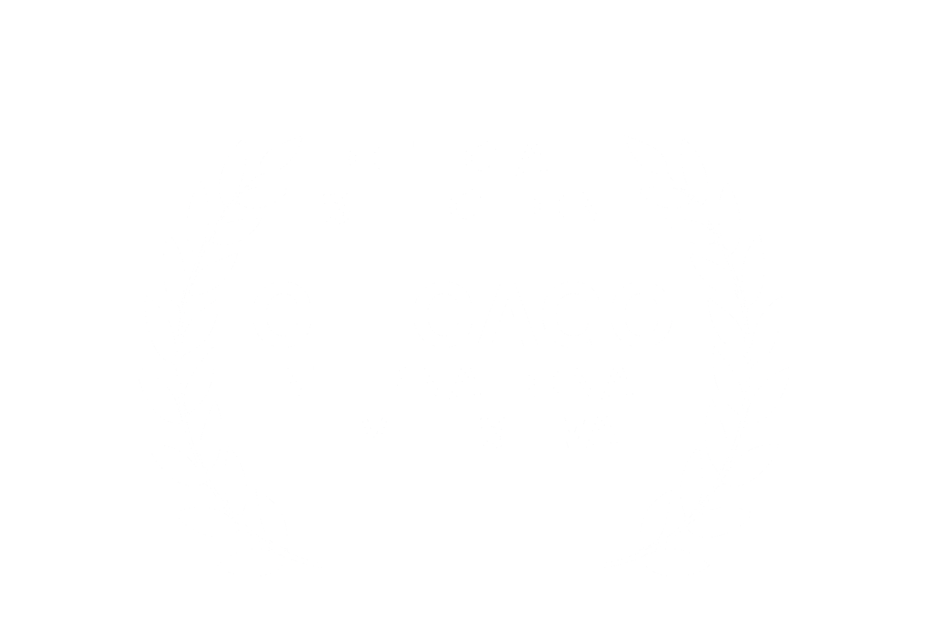 chicago_award.png