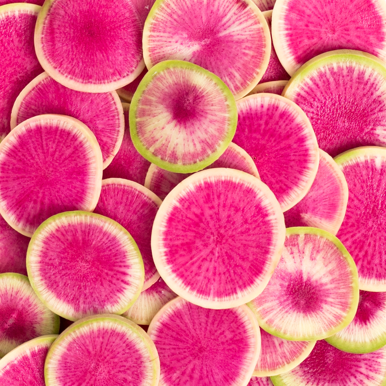 A Love Letter To Watermelon Radishes The Imperfect Blog