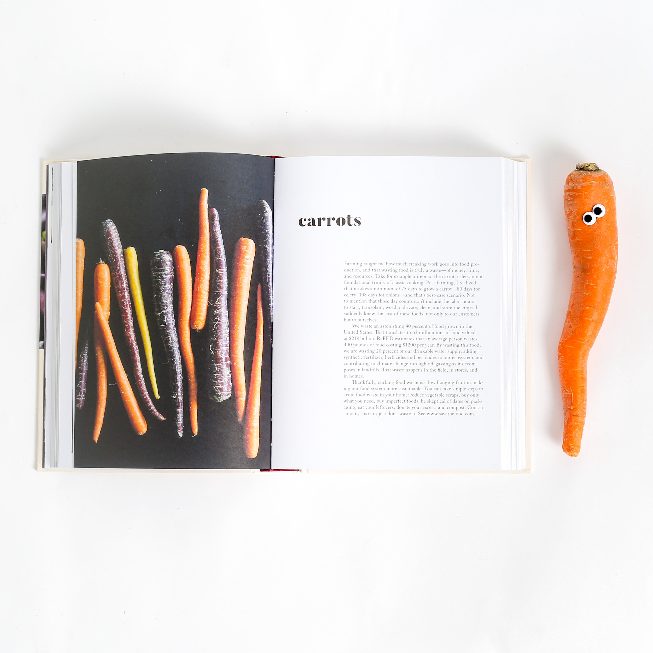 AbraCookbook_GooglyCarrot_Open_Web_CK.jpg