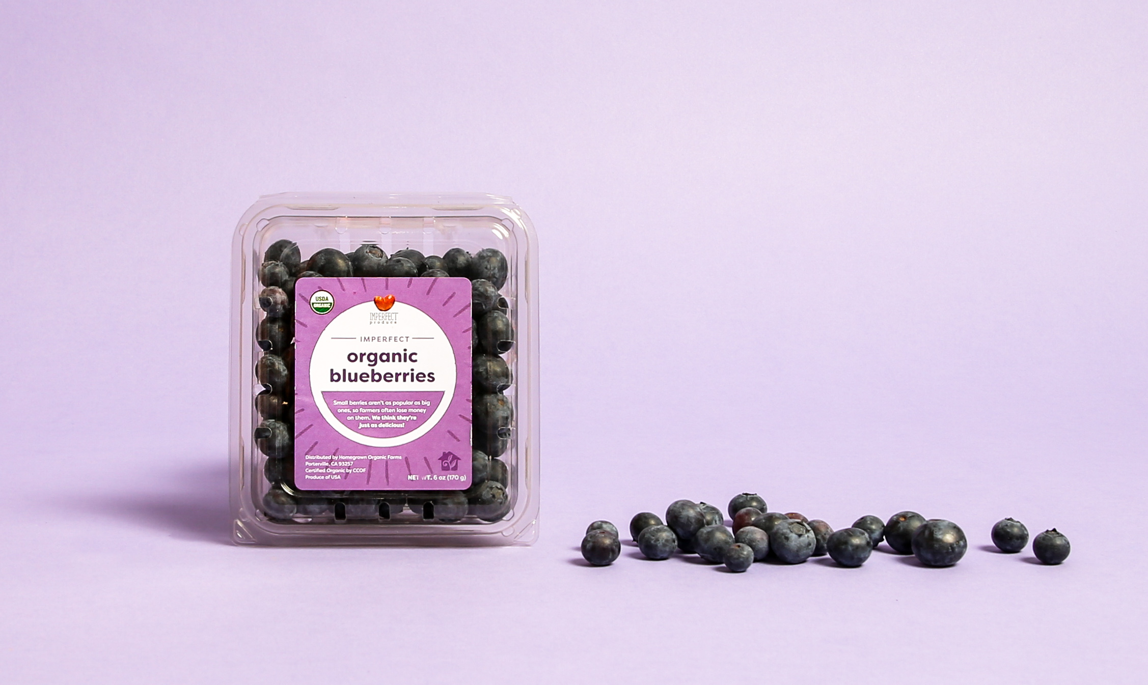 Blog_Imperfect-Blueberries_01.jpg