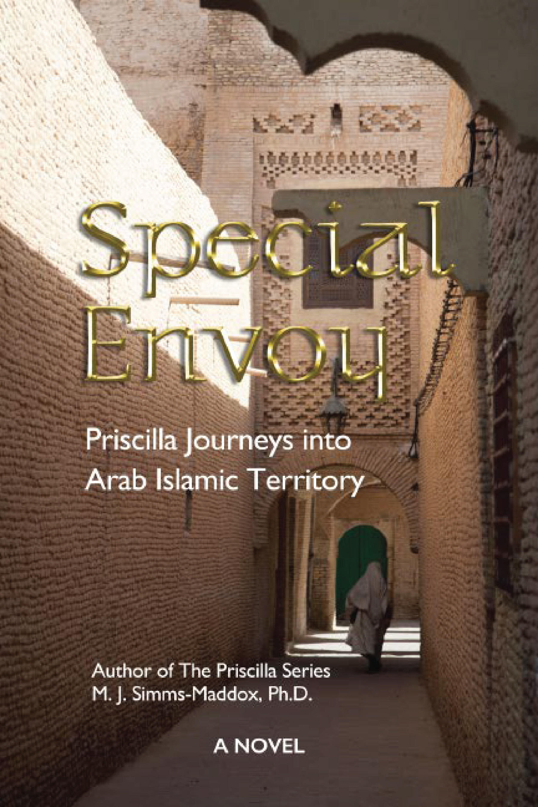SPECIALENVOY - Set in the winter 1989 in the American Midwest, New England and the Middle East, a suspense-filled thriller, Special Envoy, delves behind-the-scenes into the making of American foreign policy. When the newly-inaugurated president commissions Priscilla as a
