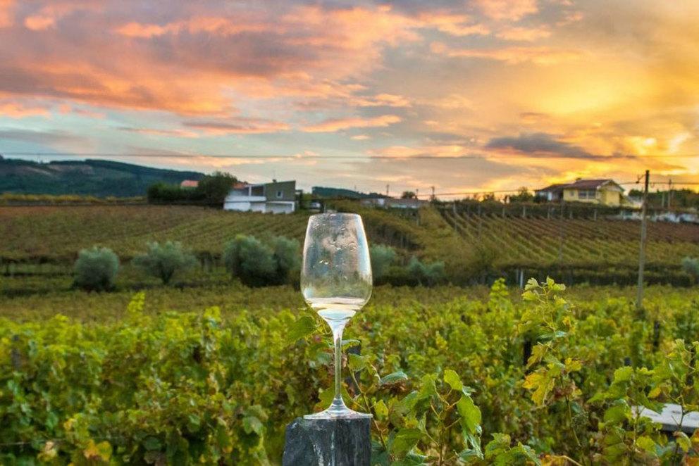 napa wine tours.jpg