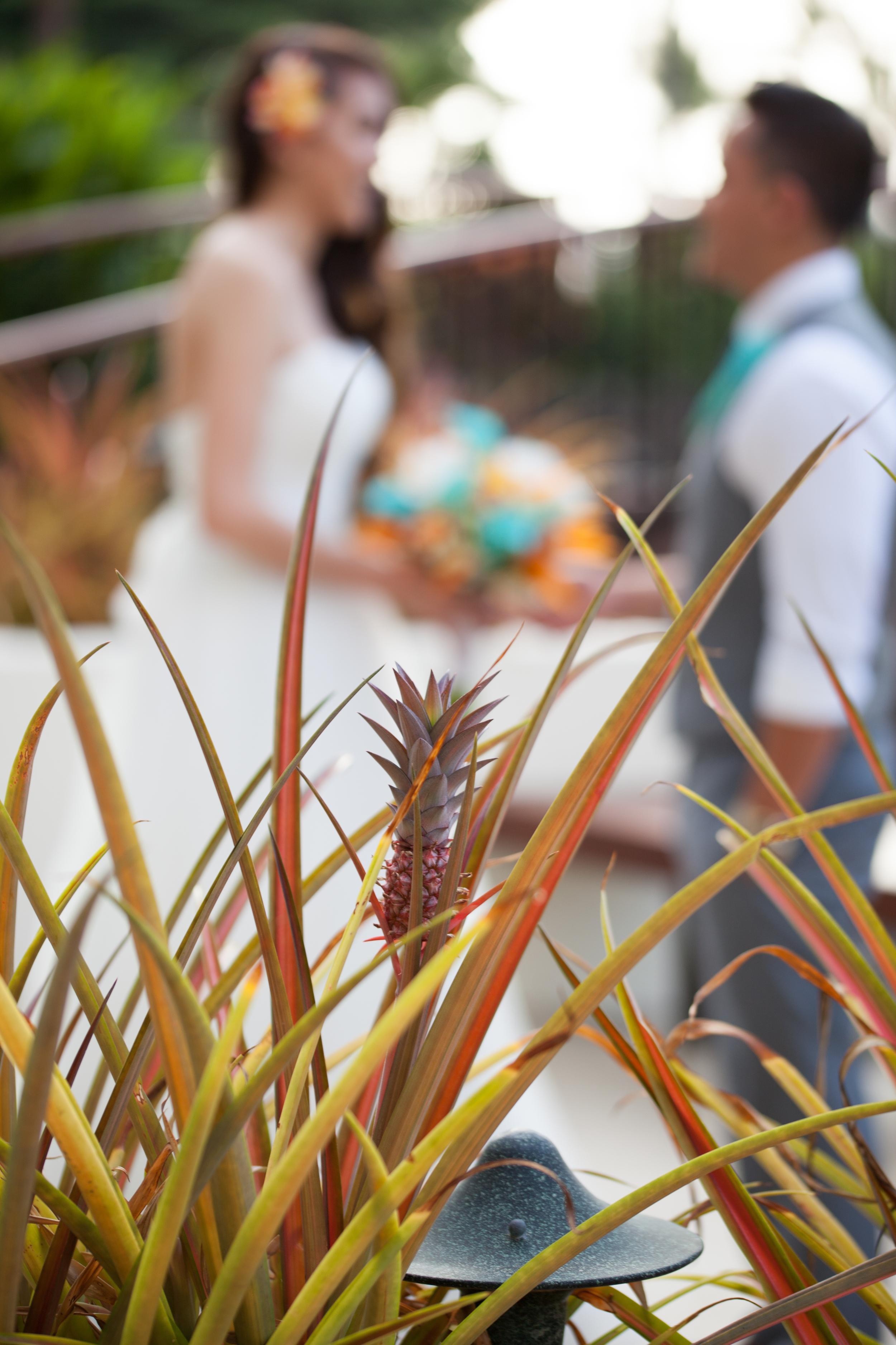 big island hawaii mauna lani resort wedding © kelilina photography 20160523175633-1.jpg
