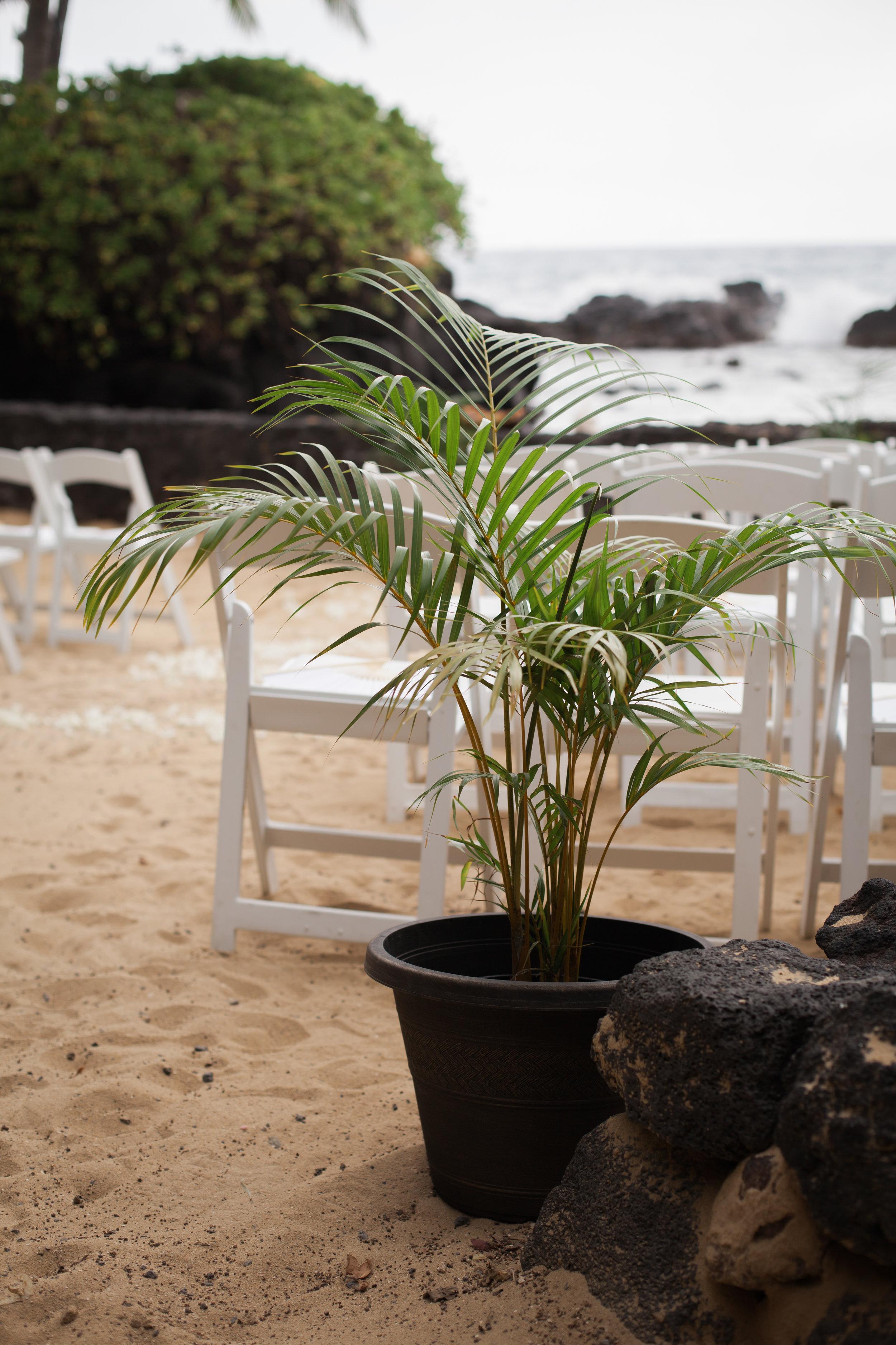 big island hawaii royal kona resort beach wedding © kelilina photography 20170520161749.jpg