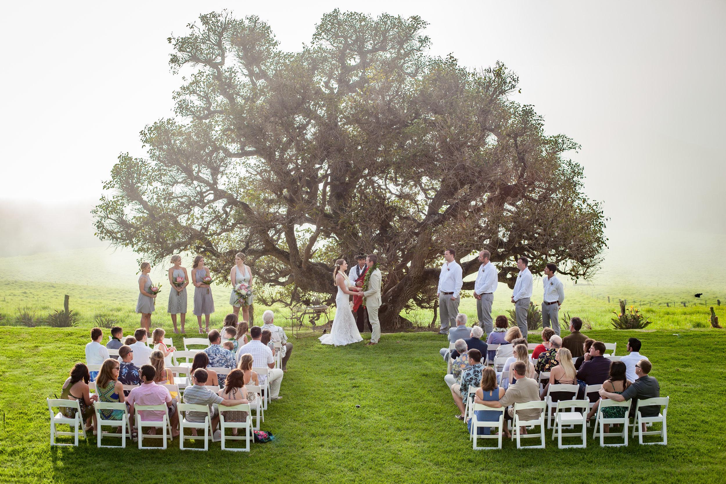 big island hawaii kahua ranch wedding © kelilina photography 20170106164616.jpg