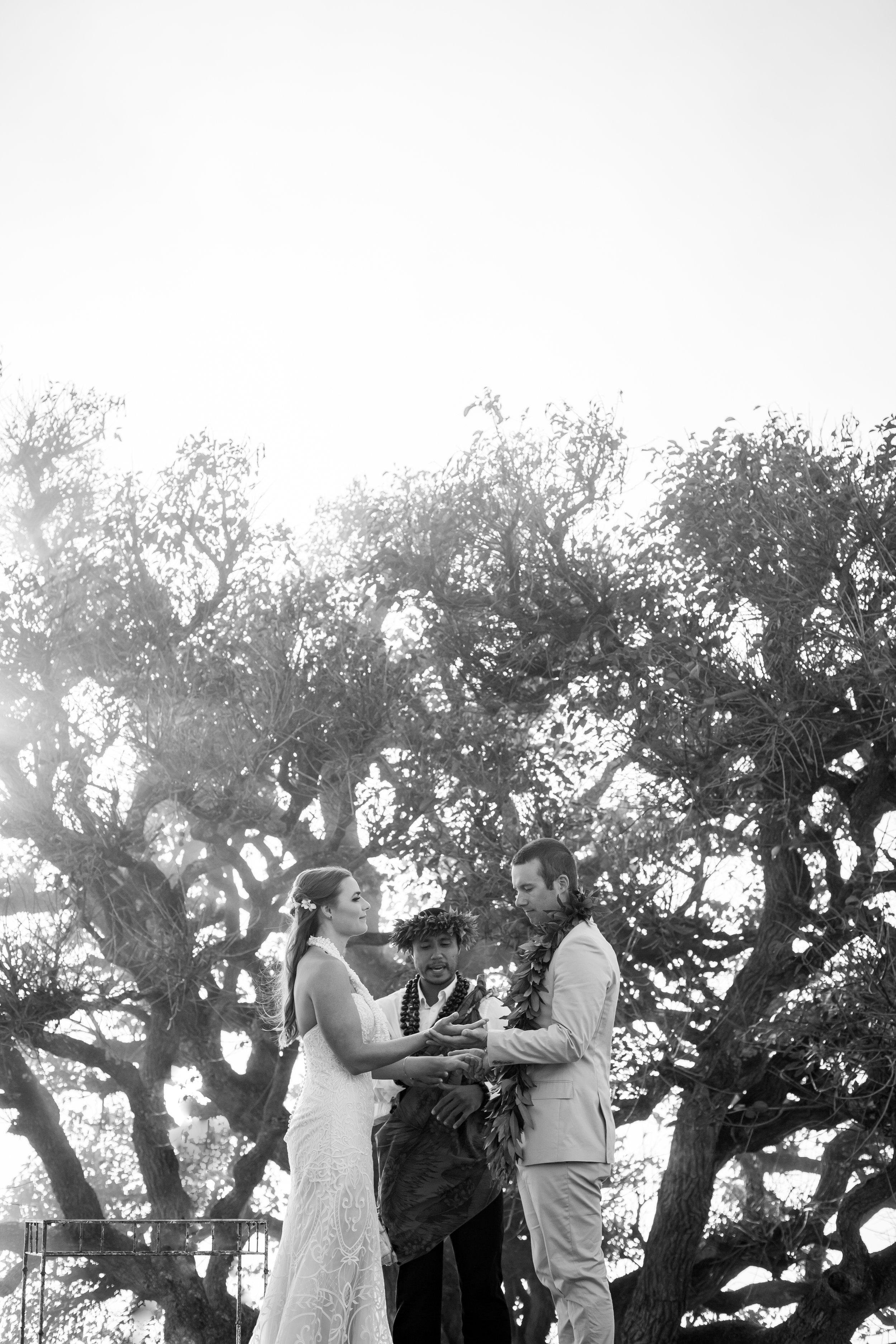 big island hawaii kahua ranch wedding © kelilina photography 20170106165302.jpg