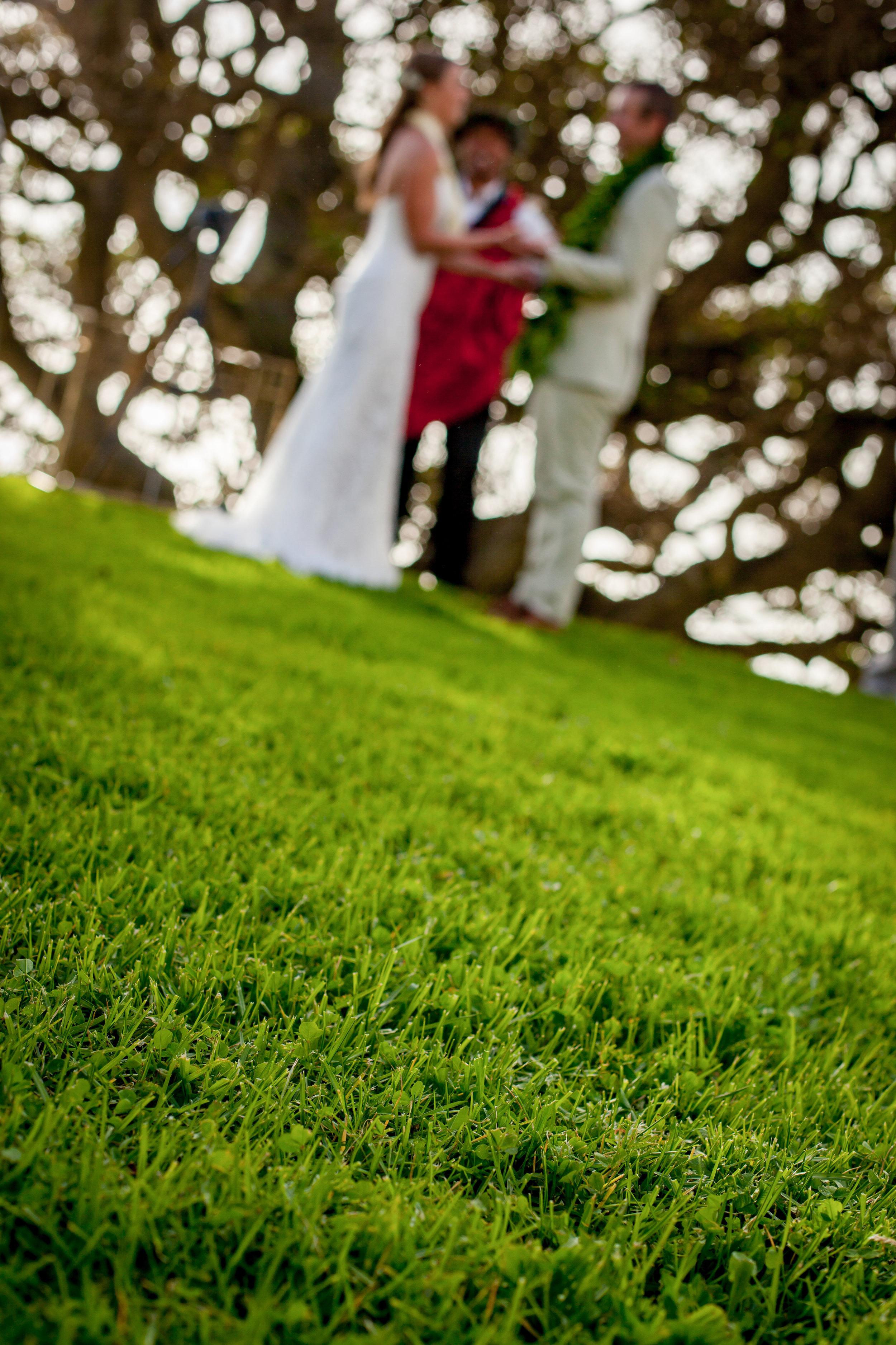 big island hawaii kahua ranch wedding © kelilina photography 20170106165309.jpg