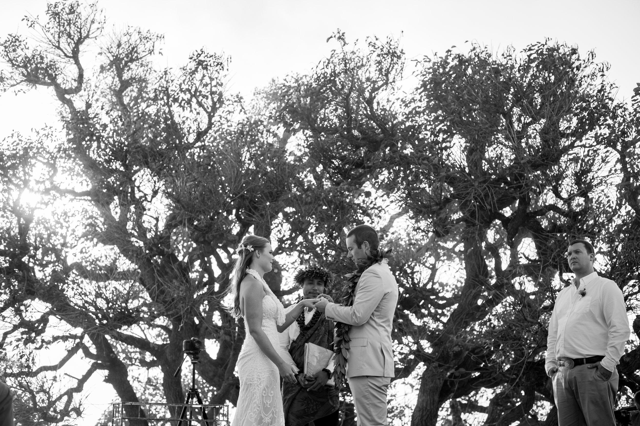 big island hawaii kahua ranch wedding © kelilina photography 20170106165322.jpg