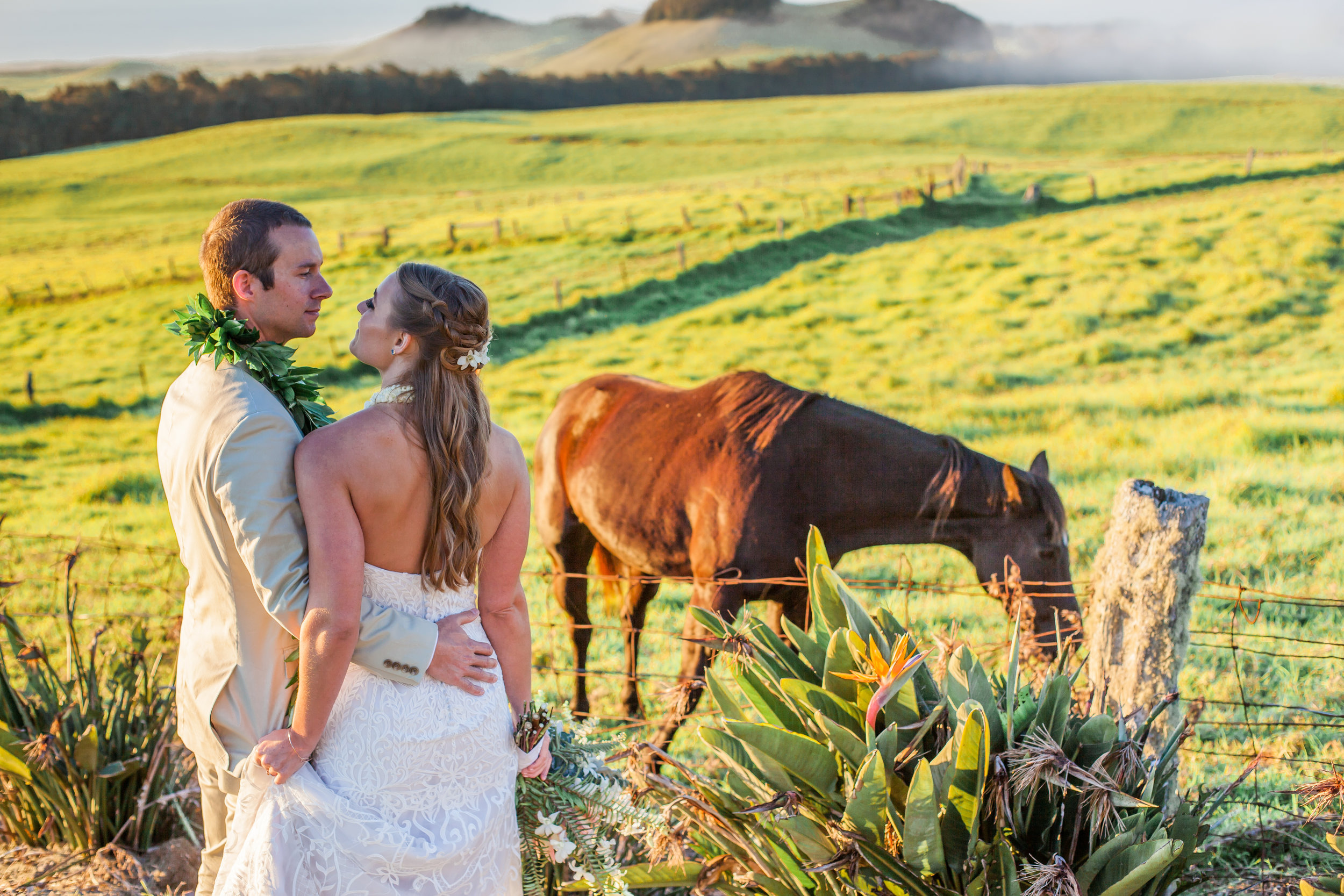 big island hawaii kahua ranch wedding © kelilina photography 20170106174729.jpg