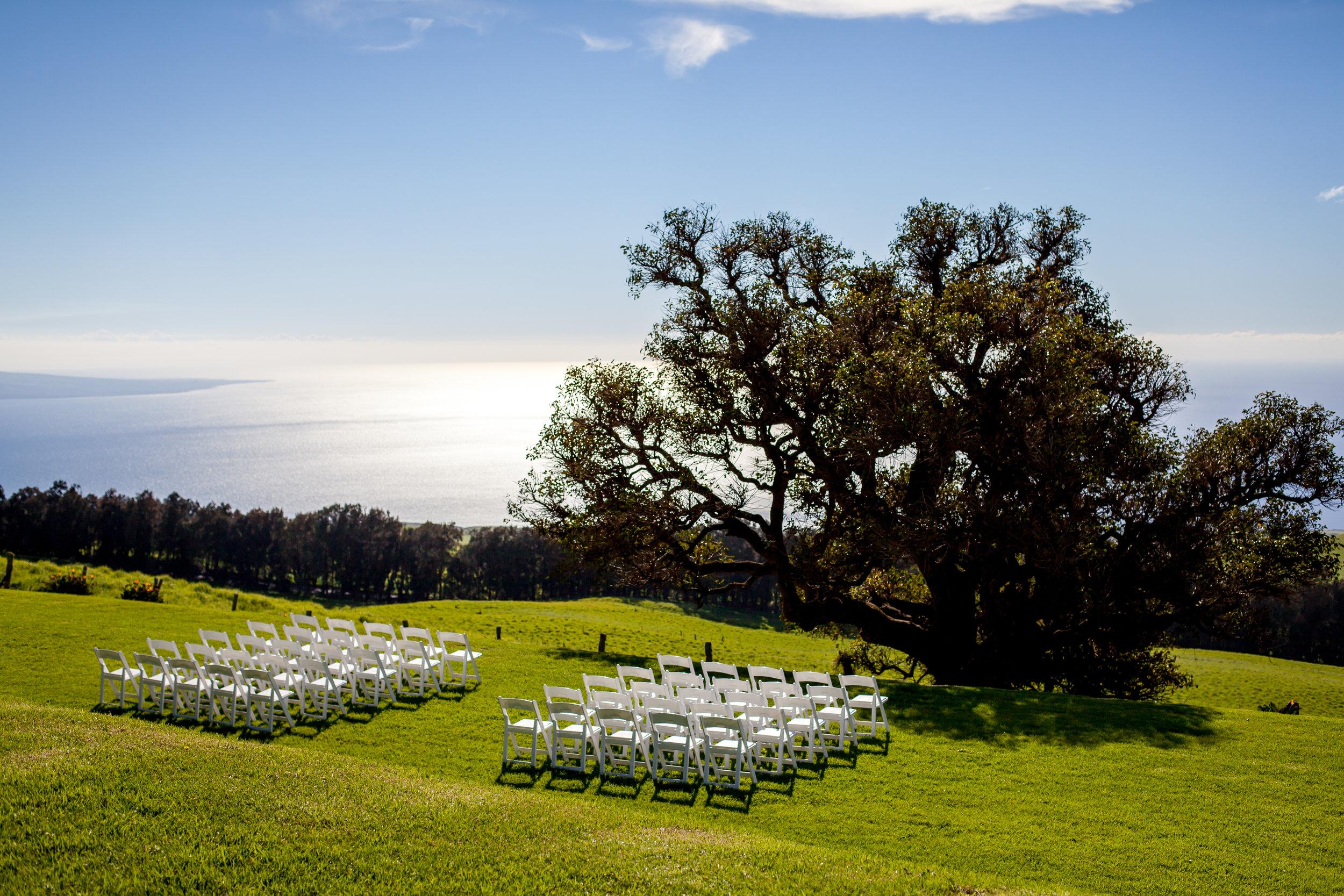 big island hawaii kahua ranch wedding © kelilina photography 20170106175959.jpg