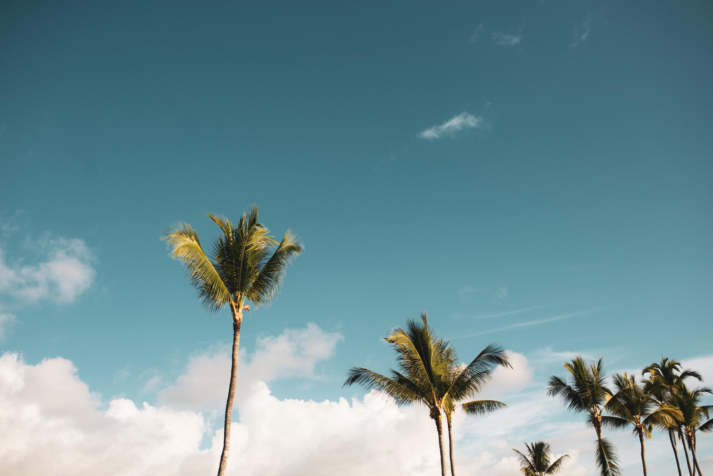 kelilina photography hawaii florida destination wedding photographer-23.jpg