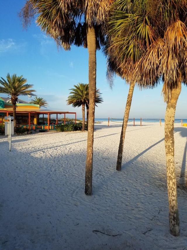 www.florida-beachrentals.com