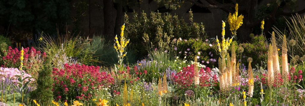 gardenpic1-1000x350.jpg