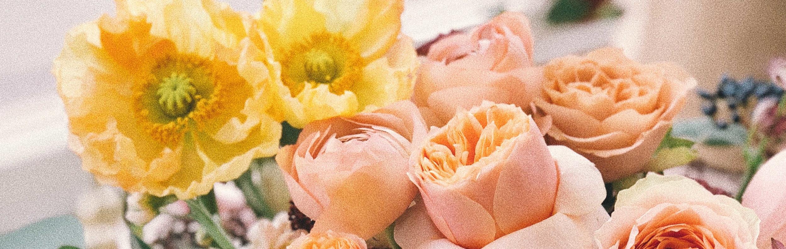 anniversary-beautiful-bloom-xcrop.jpg