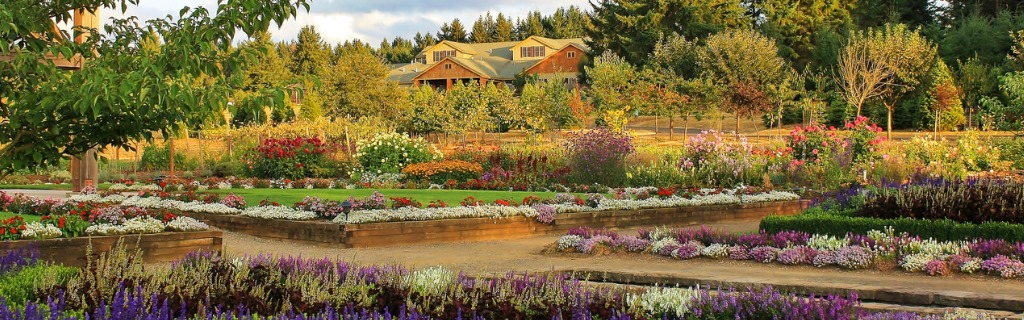 oregon-garden-in-late-summer-picture-id476131876.jpg