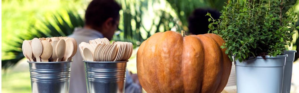 pumpkin-cutlery-thyme-rosemary-picture-id187098250.jpg
