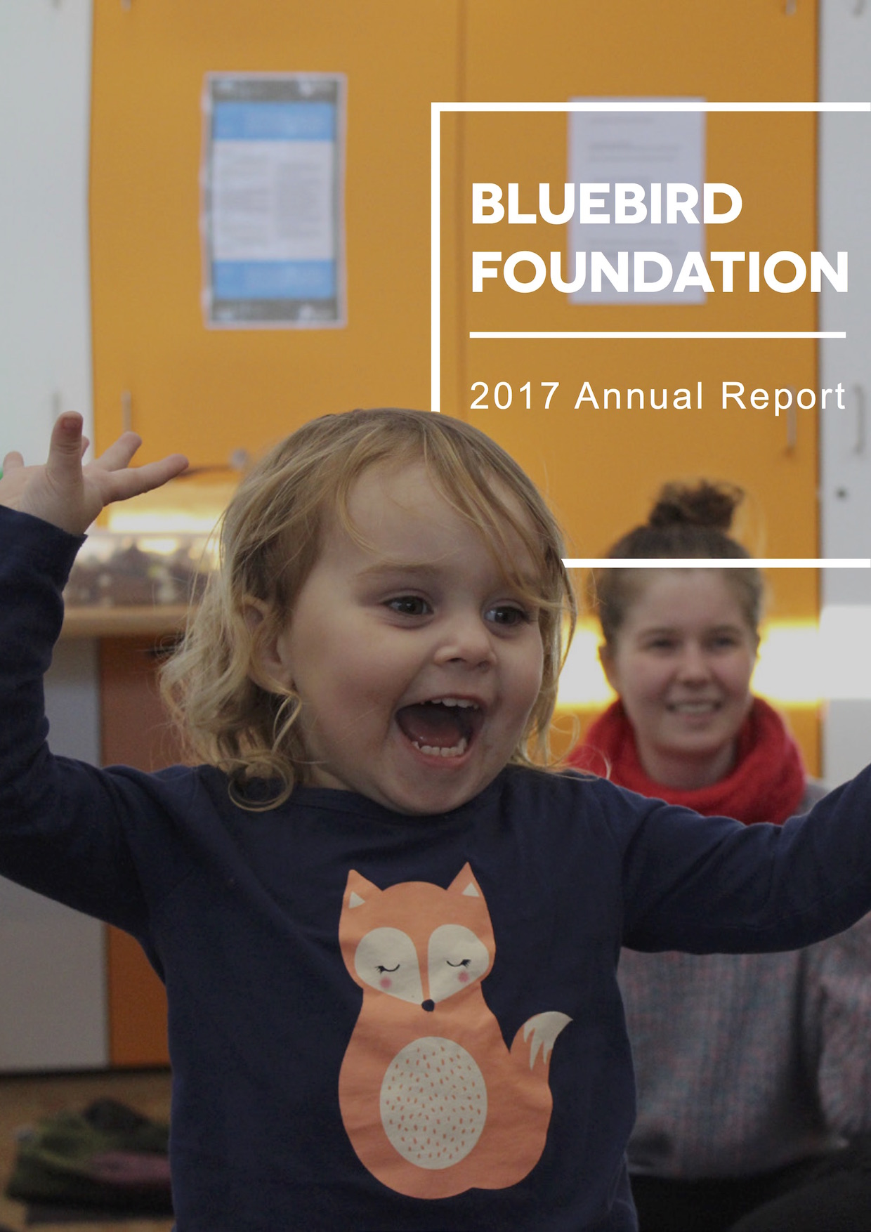 Bluebird Foundation 2017 Annual Report