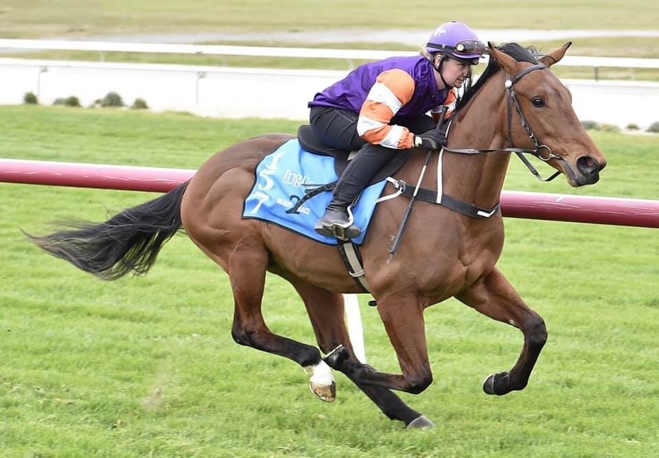 Lot 81 - Bullpoint x Just Incredible (Ire) (colt) breezed in 11s