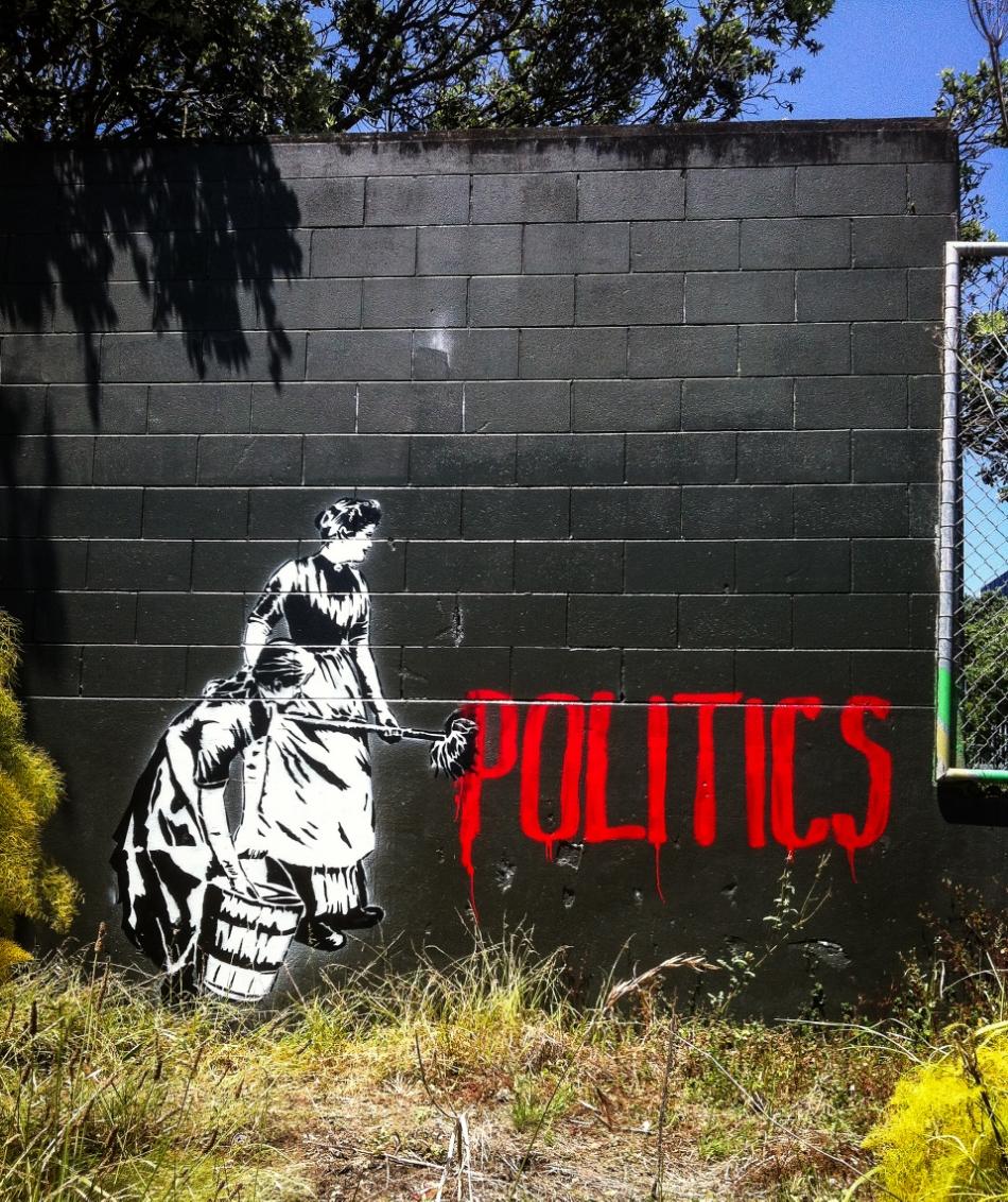 Politics  Grafton Auckland 2014