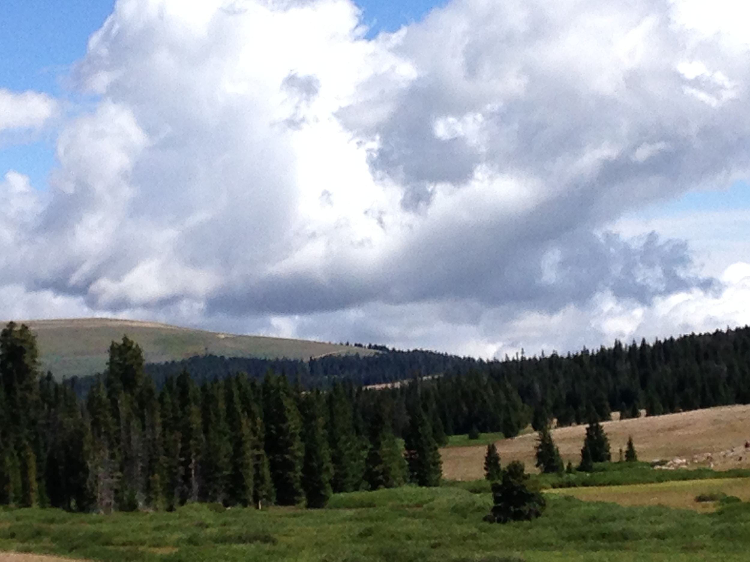 Scenery and great sky on Big Horn Mt. in Wyoming Highlands