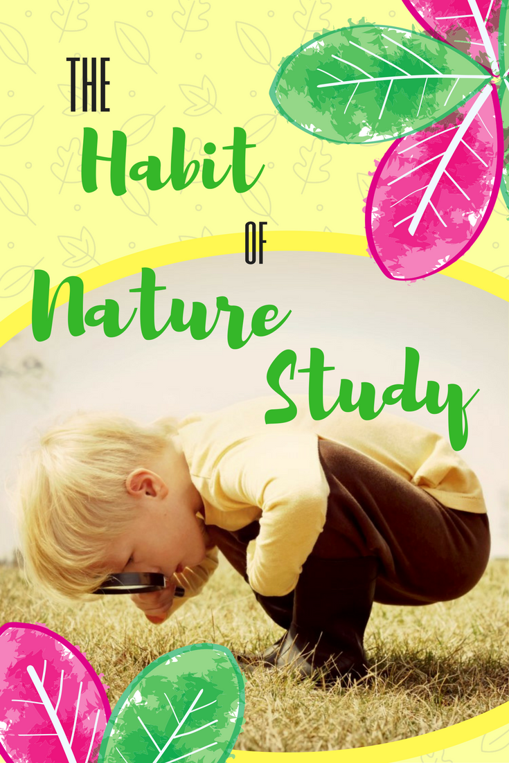 The object of nature study is firstly to cultivate in your child a love and appreciation for God's creation allowing him to see and judge true beauty from His perspective. -