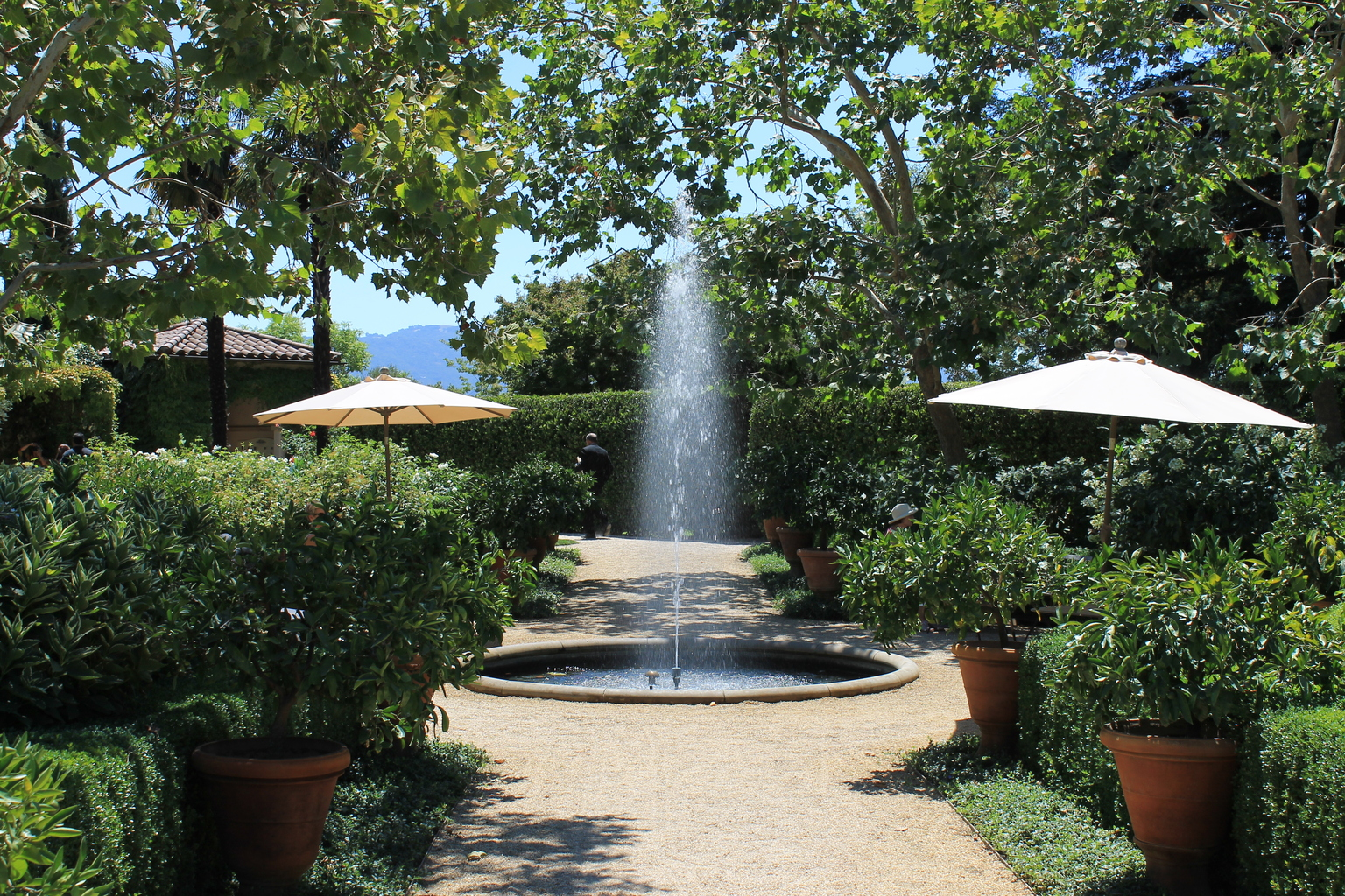 Chateau St. Jean Fountain Sonoma Winery