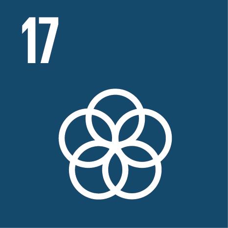 E_SDG_Icons_NoText-17.jpg