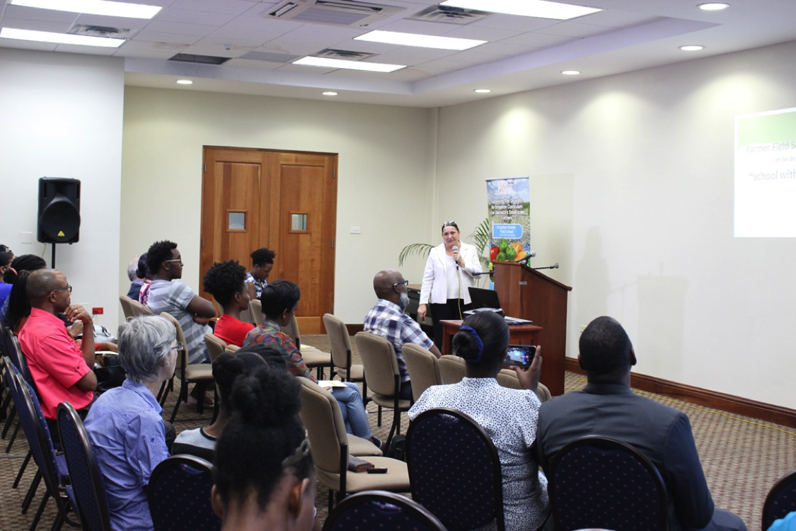 Public Seminar- Speaker: Mrs. Marina Young, Acting Principal Director of Technical Services, Rural Agricultural Development Authority