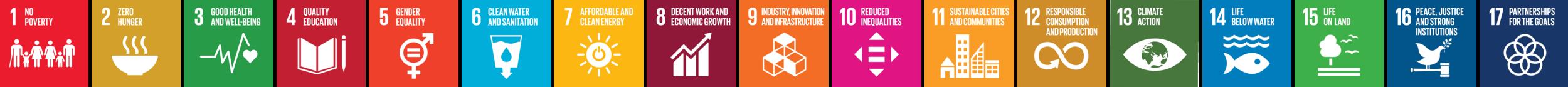 SDG_Icon_Stripe.png