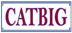 CATBIG_logo 1.JPG