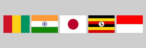 SI_Update_Flags.jpg