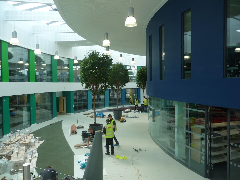 nailsea-school-plantcare-interior-plants-trees-bristol-cardiff-image-2