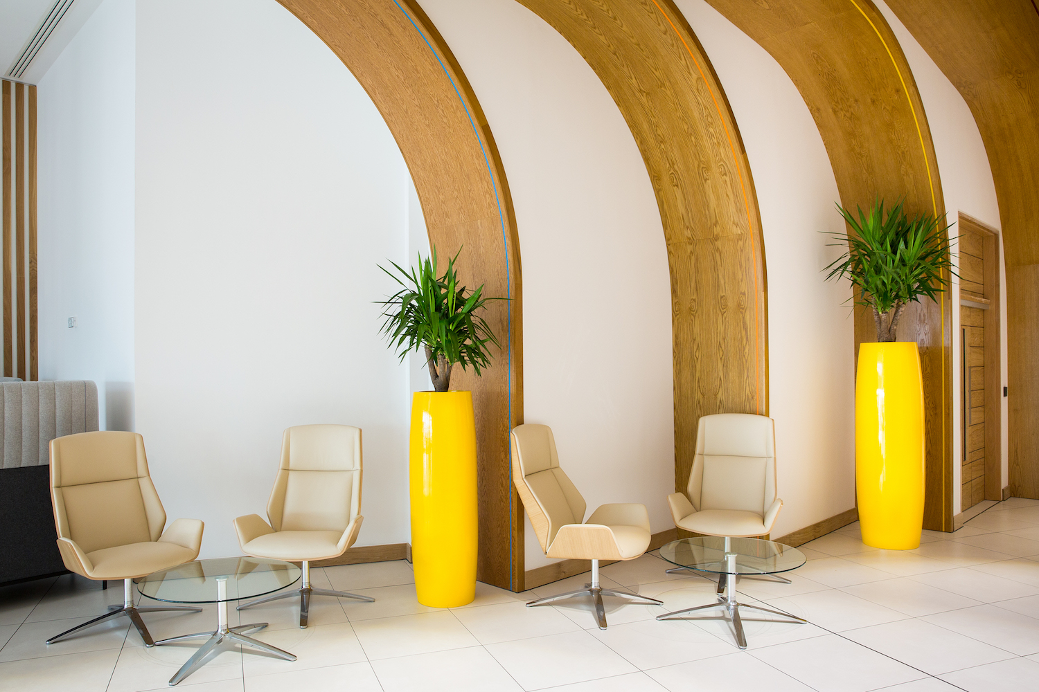 interior-plants-plantcare-bristol-cardiff-interiorscapes-eco-friendly-corporate-office-1