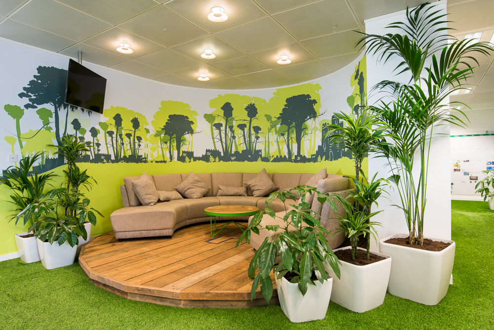 ovo-energy-plantcare-interior-plants-office-eco-friendly-trees-bristol-cardiff-image-6