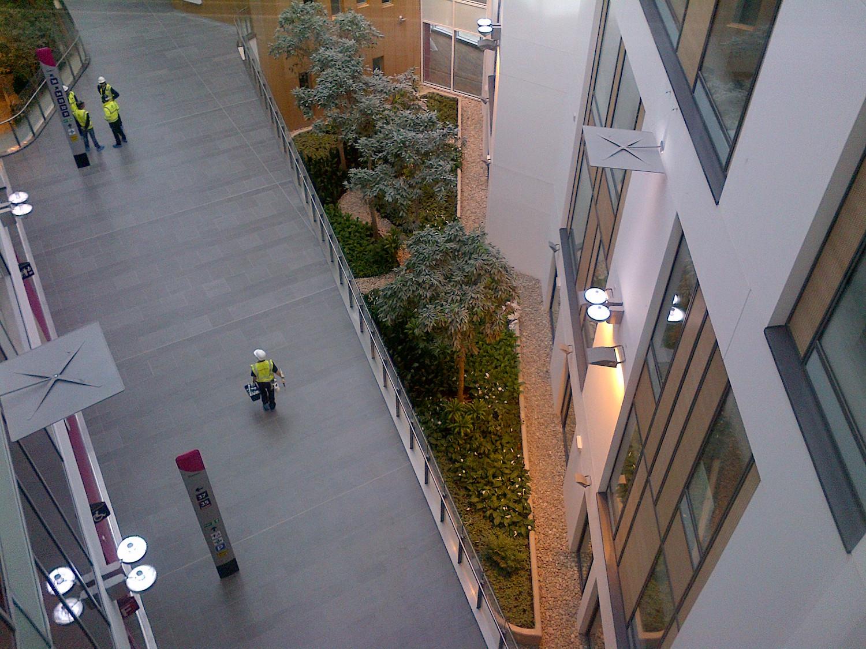 southmead-hospital-plantcare-interior-plants-trees-bristol-image-7