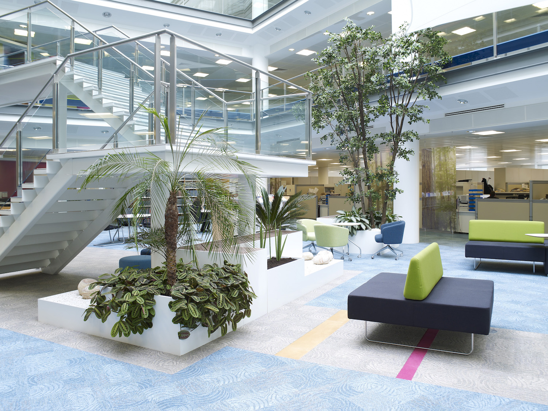 dac-beachcroft-plantcare-interior-plants-trees-bristol-image-4