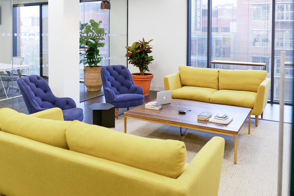ovo-energy-2-plantcare-interior-plants-office-eco-friendly-trees-bristol-cardiff-image-5